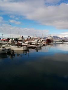Skipulag haf- og strandsvæða