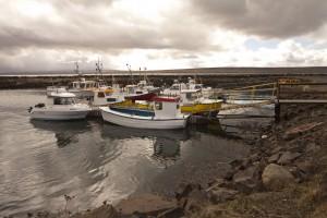 Endurnýjaður kynningarvefur stjórnvalda um sjávarútveg